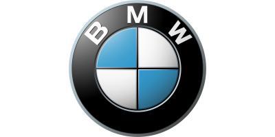 Client BMW Logo