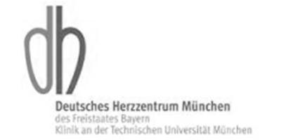 Client DHM Logo